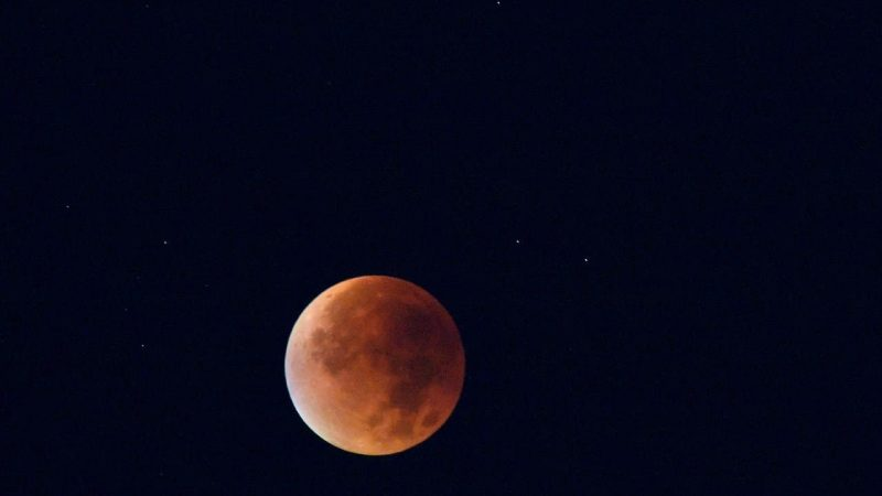 image of blood moon taken from a phone